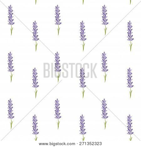 Seamless Pattern With Lavender. Provence Vector Illustration.