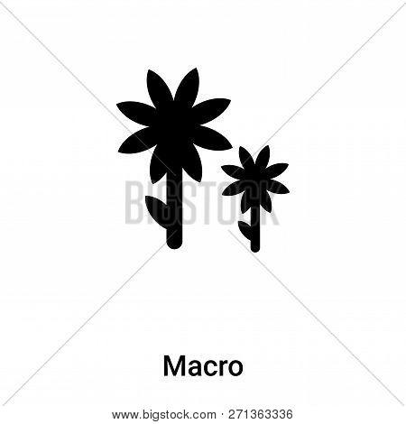 Macro Icon In Trendy Design Style. Macro Icon Isolated On White Background. Macro Vector Icon Simple