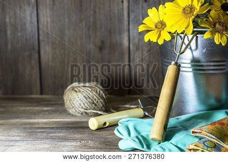 Gardening. Planting And Replanting Plants. A Bouquet Of Yellow Bright Garden Flowers In A Steel Buck