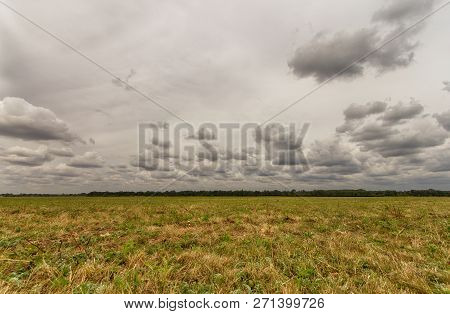 Empty Field Meadow With Cloudy Grey Sky