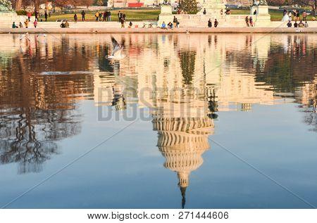 The reflection of United States Capitol - Washington DC United States of America