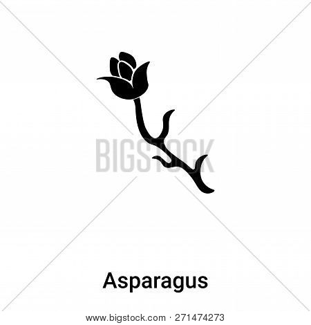 Asparagus Icon In Trendy Design Style. Asparagus Icon Isolated On White Background. Asparagus Vector