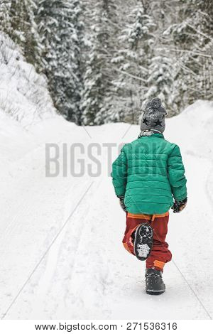 Boy In A Green Jacket And Red Pants Runs Along A Snowy Road In A Coniferous Forest. Winter Day. Back