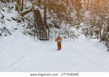 Little Boy In An Orange Jumpsuit Standing Near The Stairs In A Snowy Coniferous Forest. Winter Sunny