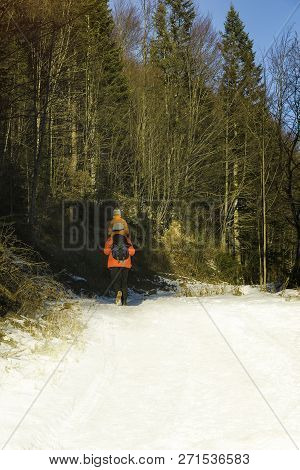 Man With Son On Shoulders Walking Along The Road In A Snowy Forest. Winter. Day. Vertical Frame