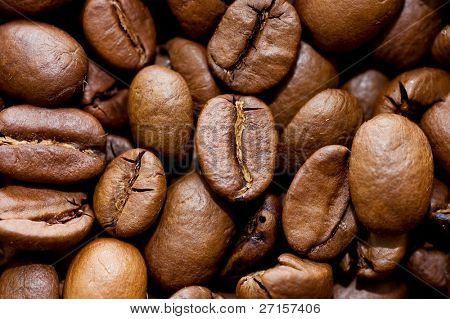 Close up macro shot of coffee bean
