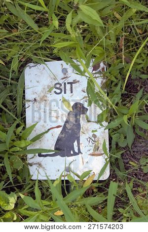 Metal sign laying on the mud and grass saying sit with painting of a dog.