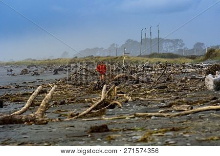 Hokitika New Zealand - November2,2015 : Uprooted And Dry Tree Stump On Sea Beach Of Hokitika Town We