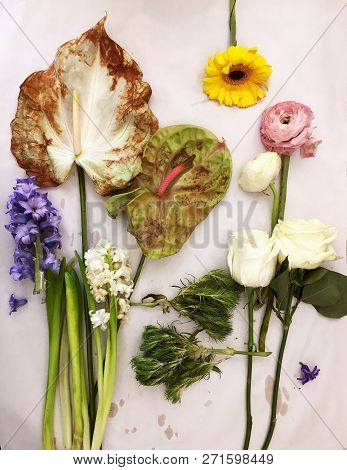 Florist Workplace After Work. Top View. Making Floral Decorations. Florist Workplace On White Backgr