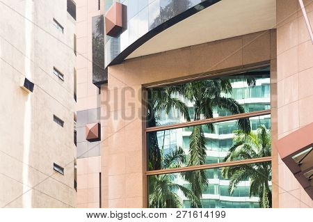 Reflectrion Of Tropical Palm Trees In Windows Of Building