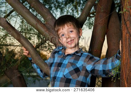 A Young Boy Stands In A Tree Around Sunset Time.  He Has A Goofy Expression On His Face As He Looks