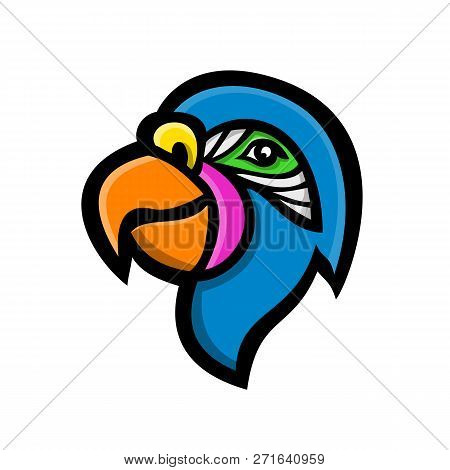 Mascot Icon Illustration Of Head Of A Parrot, Also Known As Psittacine, Birds  That Mostly Found Tro