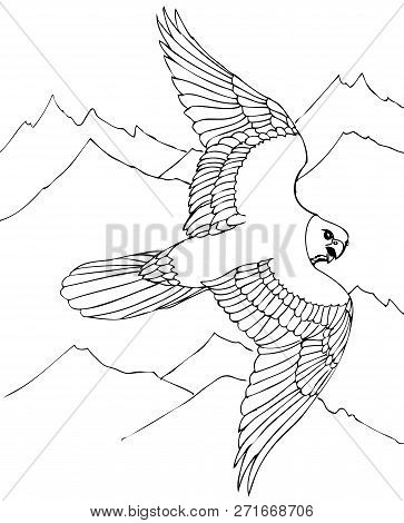 Hawk Flies Over Rocky Mountains. Hand Drawn Illustrations For Coloring
