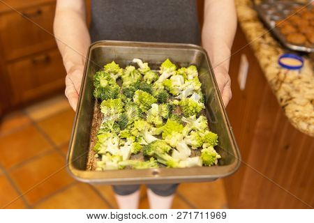 Woman Holding Fresh Broccoli In A Pan. Broccoli Is Raw And Uncooked.