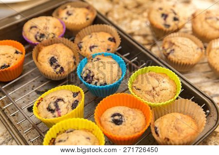 Homemade Blueberry Muffins Baked In Colorful Silicone Cups, Cooling On A Baking Rack In A Kitchen.