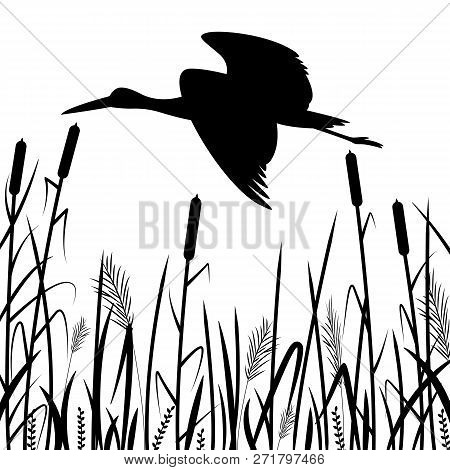 Black Heron Flying , Vector Illustration ,  Black Silhouette ,profile View