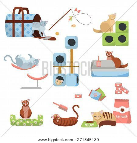 Set Of Cat Accessories Cats: Scratching Post, House, Bed, Food , Toilet, Slipper, Carrier And Toys W