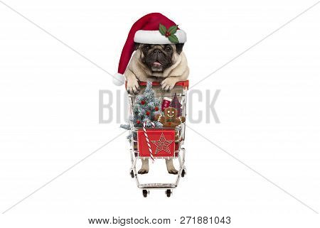 Cute Happy Seasonal Pug Puppy Dog With Shopping Cart Full Of Christmas Decoration, Candy And Tree, I