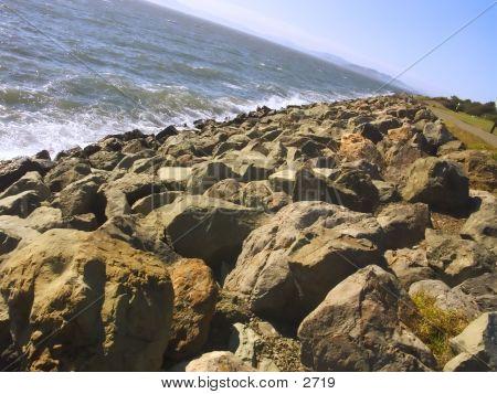 Berkeley Marina Shoreline
