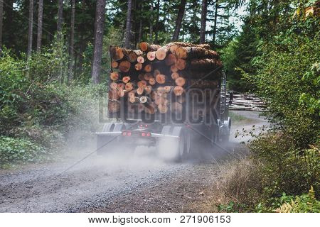 Logging Truck Hauling A Full Load Down A Dusty Dirt Road In The Forest