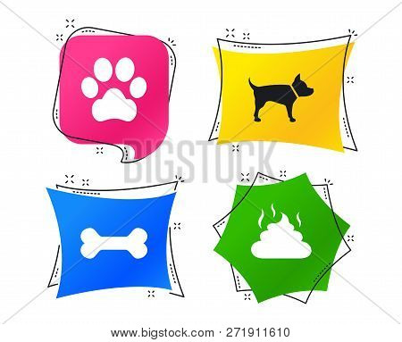 Pets Icons. Dog Paw And Feces Signs. Clean Up After Pets. Pets Food. Geometric Colorful Tags. Banner