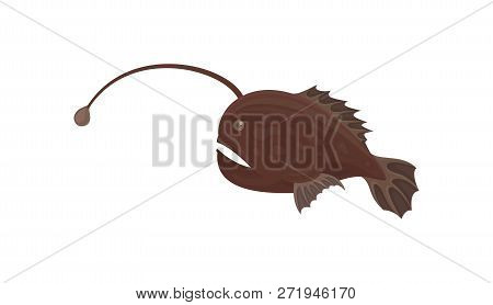 Small predatory fish with brown fins. Marine creature. Small sea animal. Underwater life. Flat vector design poster