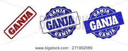 Ganja Scratched Stamp Seals In Red And Blue Colors. Vector Ganja Labels With Grunge Texture. Graphic