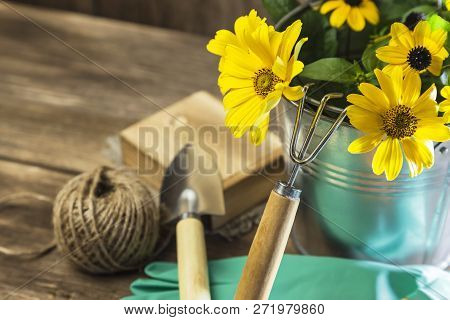Gardening. Hobby. Planting And Replanting Plants. A Bouquet Of Yellow Bright Garden Flowers In A Ste
