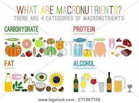 Main Food Groups - Macronutrients. Carbohydrates, Fats, Proteins And Alcohol. Dieting, Healthcare An
