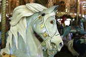 a close view of one of the painted horses on a merry-go-round ride in san francisco's golden gate park. poster