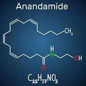 Anandamide molecule. It is endogenous cannabinoid neurotransmitter. Structural chemical formula and molecule model on the dark blue background. Vector illustration poster