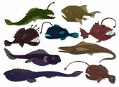Flat vector set of different predatory fishes. Sea creatures. Marine animals. Underwater life theme poster