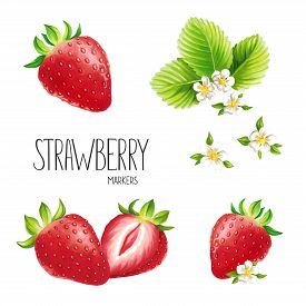 Strawberry On White Background. Sketch Done In Alcohol Markers. You Can Use For Greeting Cards, Post