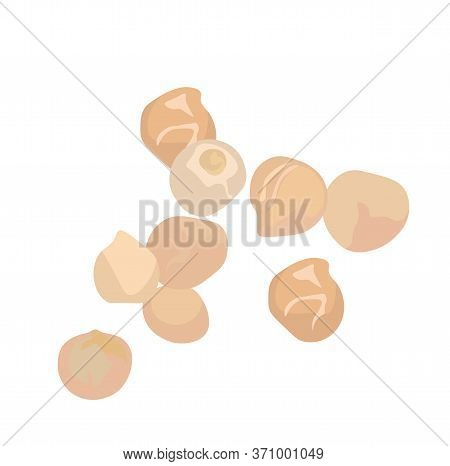 Vector Stock Illustration Of Chickpeas. Legume Plant Close-up. Snacks Hummus And Falafel. Vegetarian
