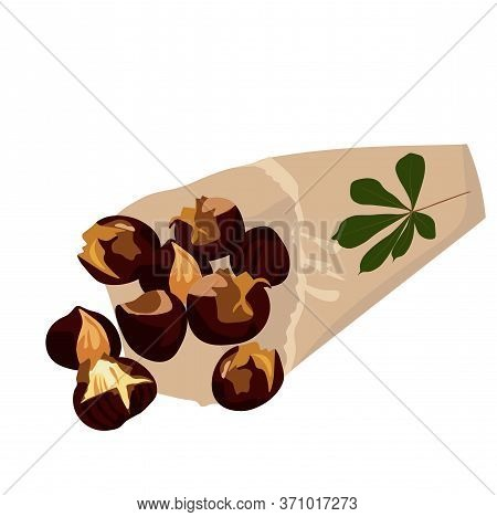 Vector Stock Illustration Of A Roasted Chestnut. Hot, Sliced Nuts In A Paper Bag. Chestnut Leaf. Tra