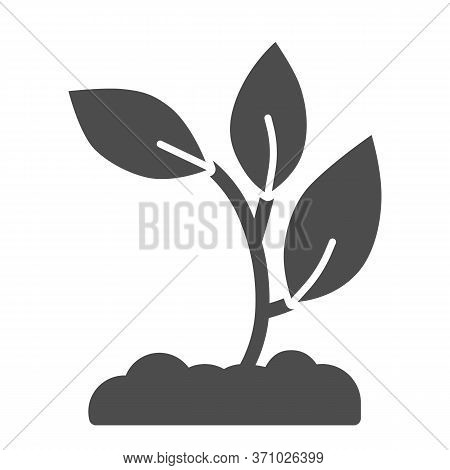 Seedling In Soil Solid Icon, Nature Concept, Sprout Growth In Ground Sign On White Background, Young