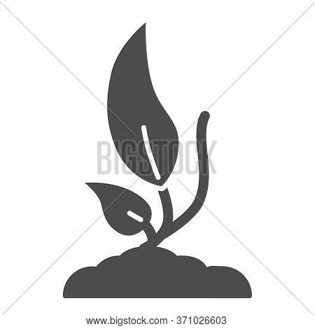 Plant Sprouting From Ground Solid Icon, Ecology Concept, Seedling Germinates Sign On White Backgroun