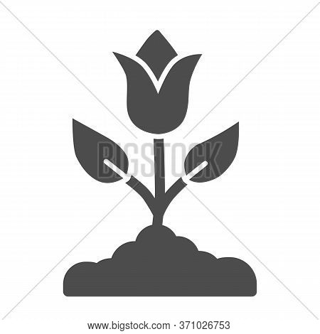 Tulip Solid Icon, Spring Flowers Concept, Tulip Bud With Leaves Sign On White Background, Tulip Flow