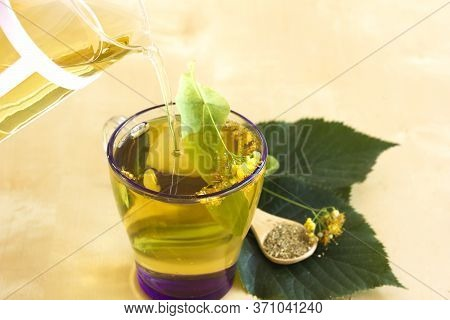 Glass Teapot And Cup Of Linden Tea. Healthy Tea. Herbal And Natural Hot Drink. Leaves Of Lime Trees,