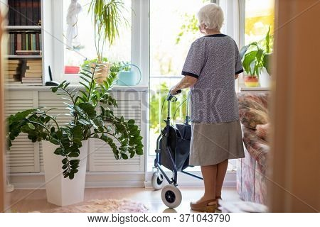 Rear view of a senior woman with walking frame at home