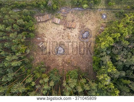 Top View Of Part Of The Felled Forest.
