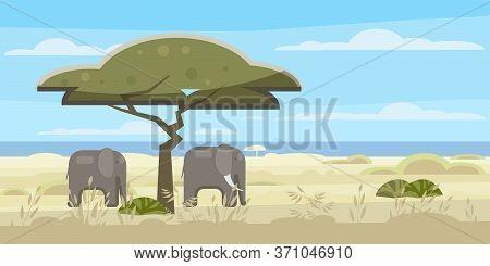 African Landscape, Savannah, Wild Herd Of Elephants, Panorama, Nature, Trees, Wilderness. Modern Fla