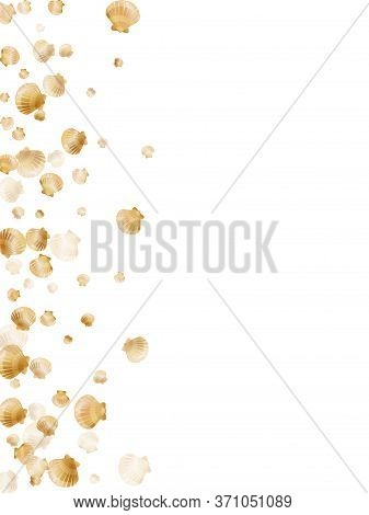 Gold Seashells Vector, Golden Pearl Bivalved Mollusks. Aquatic Scallop, Bivalve Pearl Shell, Marine