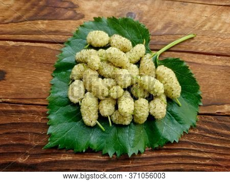 White Mulberry Fruit On Green Mulberry Leaf. Fresh Ripe White Mulberry Berries & Leaf On Wooden Tabl