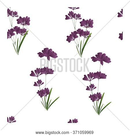 Seamless Pattern With Flowers, Buds And Lavender Leaves. Floral Print, Ornament, Composition With La