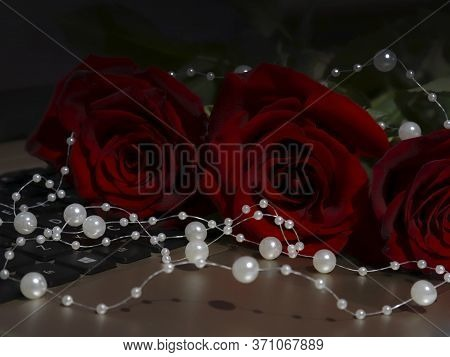 Red Roses And A White Pearl On The Laptop Keyboard. Dark Photo, Vignette, Selective Focus. Beautiful