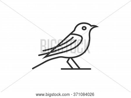Bird Logo. Line Art Bird Logo Icon. Modern Bird Logo Design Concept . Nature Bird Logo Illustration.
