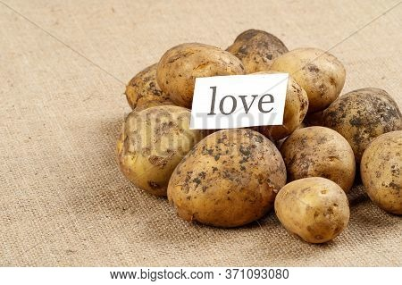 Unwashed Potatoes On A Rough Old Cloth On It Is A Leaflet With The Inscription Love. When Potatoes A