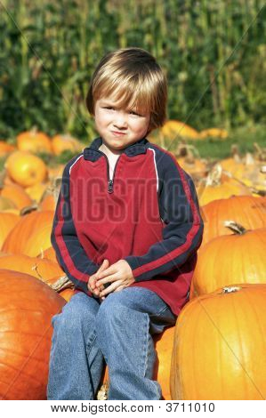 Young Child At The Pumpkin Patch