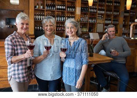 Portrait of smiling female senior friends having red wine in restaurant